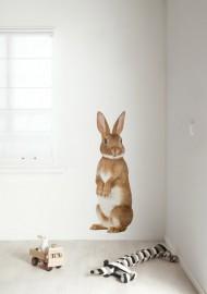 muursticker kinderkamer konijn